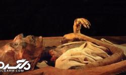 کشف مومیایی فرزند رامسیس سوم ( شاهزاده فریادزن ) + عکس