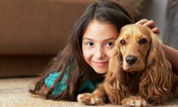 10 حیوان خانگی بامزه که می تواند شما را از افسردگی دور کند