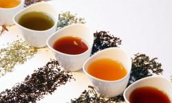 هر گروه خونی چه نوع چایی مصرف کند؟