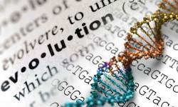 اختلال تکاملی چیست ؟ راه های تشخیص و درمان این بیماری