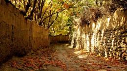 مناطق دیدنی و زیبای تهران در پاییز
