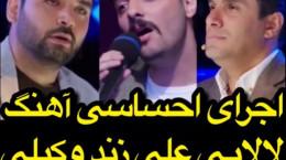 اجرای احساسی آهنگ لالایی علی زند وکیلی در عصر جدید