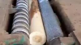 ویدیو دیدنی تبدیل تنه درخت به کاغذ چوبی