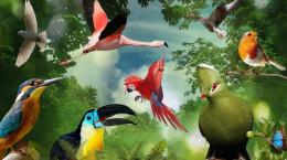 فال و طالع بینی براساس پرندگان مخصوص تاریخ تولد شما