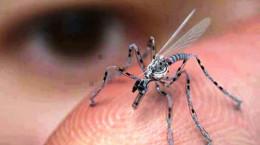 تکنولوژی حشرات جاسوسی چیست و چه طور کار می کند ؟