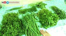 ترکیب سبزی ها برای قورمه سبزی، کوکو، آش، دلمه و سوپ