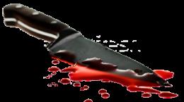 قتل هولناک پایان چاقو کشی دو همسایه