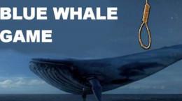 بازی نهنگ آبی خودکشی دسته جمعی 4 جوان را در دریای خزر رقم زد