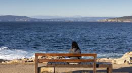شعر تنهایی | غمگین ترین شعرهای سهراب سپهری درباره تنهایی