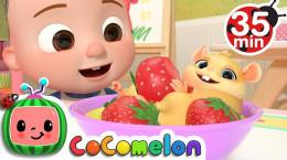 انیمیشن موزیکال کوکوملون برای کودکان تخت جدید برای jj