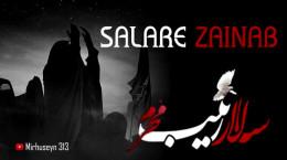 نماهنگ سالار زینب ویژه شهادت حضرت زینب (س)