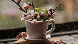 20 متن احساسی و دلنشین صبح بخیر بارانی