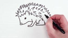 کلیپ نقاشی کودکانه نقاشی جوجه تیغی