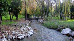 باغ چشمه بلقیس: زیبایی های ناشناخته استان کهگیلویه وبویراحمد