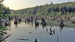 دریاچه بکر ارواح در نوشهر ..!!