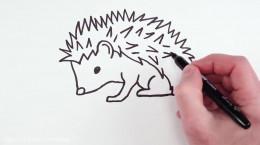 آموزش نقاشی به کودکان | این قسمت نقاشی جوجه تیغی