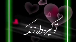 کلیپ عاشقانه تبریک روز برادر