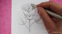آموزش کشیدن نقاشی گل رز