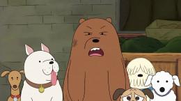 کارتون سریالی پسرانه سه خرس کله پوک فصل دوم قسمت دبیست و یکم ۲۱ دوبله فارسی