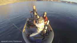 حمله های نهنگ به قایق انسان ها