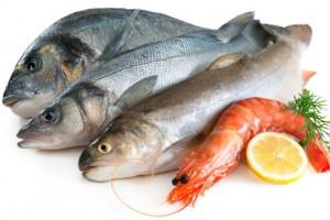 قیمت روز انواع ماهی و میگو