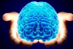 تفاوت نیمکره چپ و راست مغز انسان
