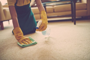 آسان ترین روش جهت از بین بردن لکه سرکه از روی فرش و موکت
