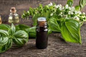 نسخه های درمانی روغن ریحان در طب سنتی + 52 خواص