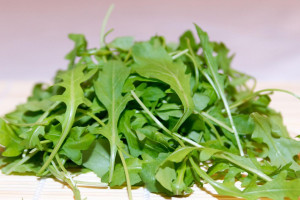 گیاه منداب یا شابانک چیست و چه فوایدی دارد؟