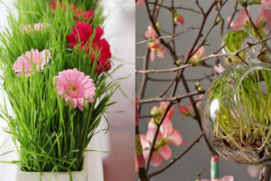 تزیین سبزه برای عید نوروز مناسب سفره هفت سین امسال