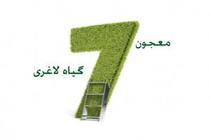 لاغری تضمینی و سریع با معجون هفت گیاه لاغری
