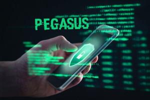 نرمافزار جاسوسی پگاسوس (pegasus) چیست و چگونه کار میکند ؟