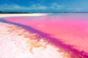 معرفی زیباترین ساحل های جهان به رنگ صورتی