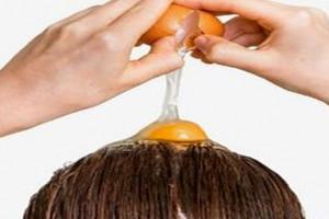 تاثیر زرده، سفیده و تخم مرغ کامل بر مو + روش مصرف هرکدام