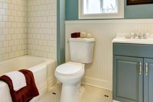 ساده ترین روش جهت شستشوی داخل فلاش تانک توالت