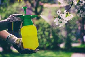 روش تهیه ۴ نوع آفت کش ارگانیک و طبیعی در منزل