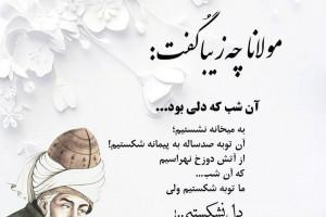 اشعار مولانا در مورد زندگی   برگزیده شعرهای زیبای مولوی در وصف زندگی
