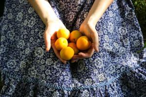 آشنایی با فواید و عوارض خوردن زردآلو در بارداری