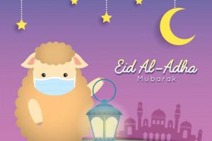 20 عکس بامزه گوسفند عید قربان با کیفیت بالا