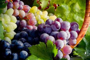 طبع انگور : انواع مختلف انگور گرم است یا سرد ؟
