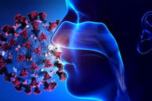 چند راهکار ساده برای بازگشت حس بویایی و چشایی بعد از کرونا