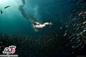 تصاویرمهیج و زیبا از دنیای زیر آب