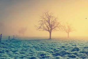 تصاویر زیبا از زمستان  سری سوم
