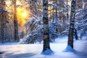 تصاویر زیبا از زمستان سری پنجم