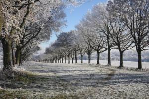 تصاویر زیبا از زمستان سری ششم