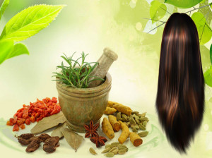 ۶۰ راهکار طب سنتی برای تقویت پیاز مو و درمان ریزش مو سر