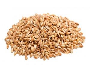 ۱۱ خاصیت شگفت انگیز آرد گندم آلمانی برای سلامتی