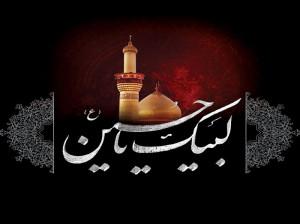 ۱۳ نوحه سینه زنی واحد و شور عاشورا از مداح حاج سید مجید بنی فاطمه