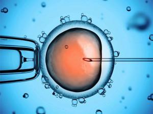 مزایای IVM نسبت به IVF برای درمان ناباروری