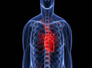 روماتیسم قلبی چیست / علائم روماتیسم قلبی کدامند؟